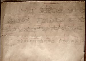Grandfather's family tree